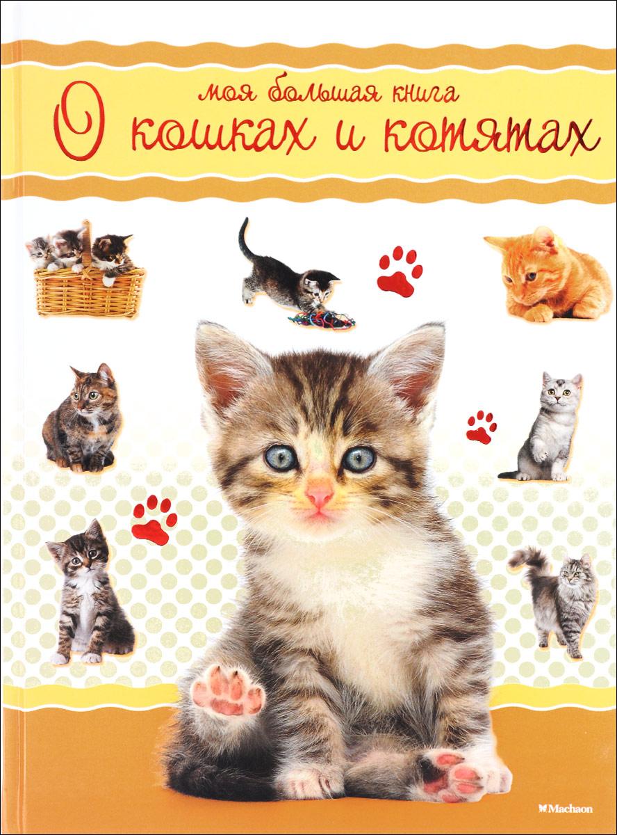 Все о кошках с картинками для детей
