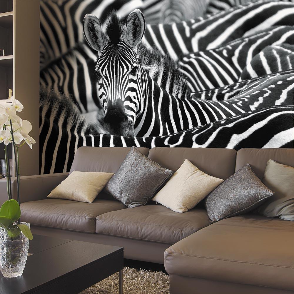 торт фото гостиной в стиле зебра процессы организме