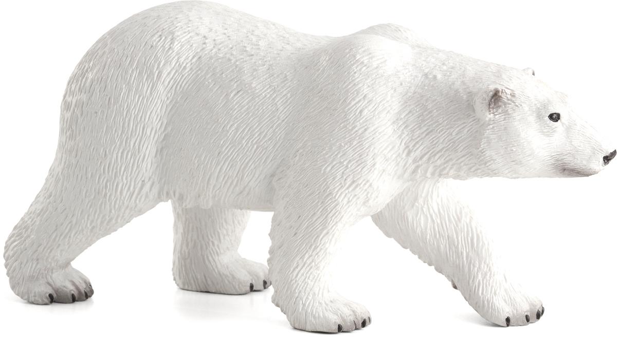 Марта текстом, белый медведь картинки на прозрачном фоне